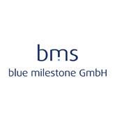 blue_milestone_Ottobrunn_klein